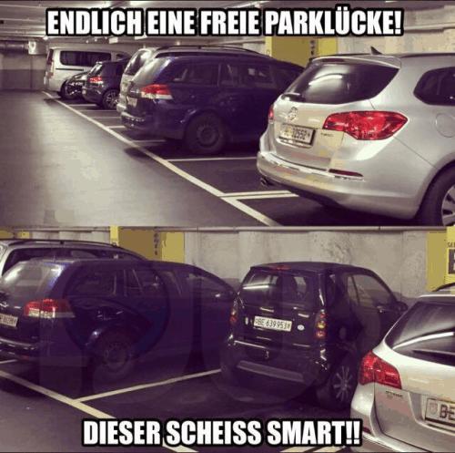 Meme - Endlich eine freie Parklücke... dieser scheiss Smart!