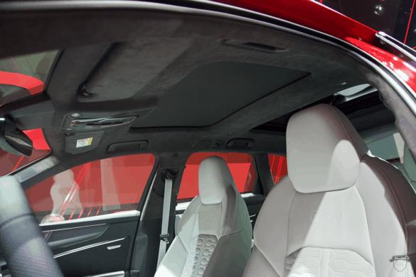 Audi RS6 C8 Innenraum / Interior Alcantara-Dachhimmel